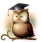 Coruja: o símbolo da Escola Cognitiva